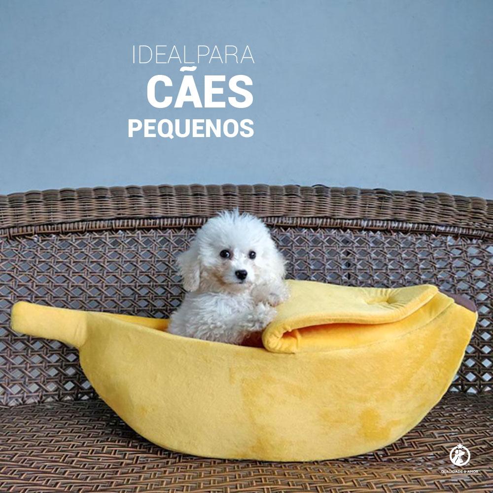 Ideal para cãezinhos pequenos ~ Petite Sofie