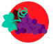 Qual é a uva usada no Vinho