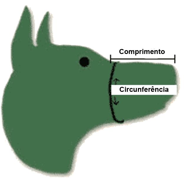 Como Medir o Focinho de Seu Cão