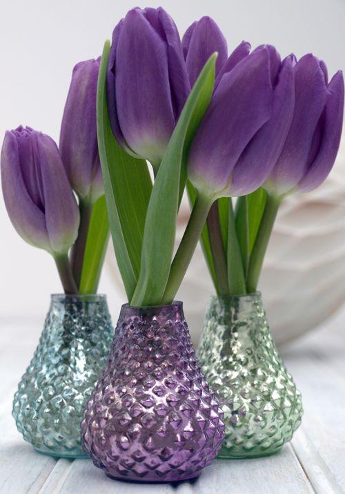 tulipas para decoração de mesa