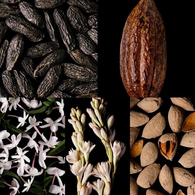 Good Girl ingredients image includes Tonka, Cocoa, Jasmin, Tuberose, Almond