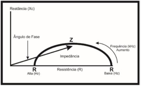 bioimpedancia tetrapolar angulo de fase
