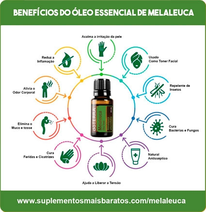 beneficios do oleo essencial de melaleuca
