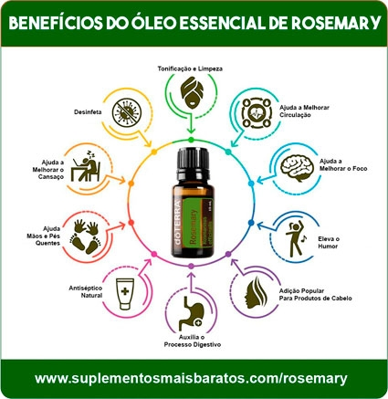 beneficios do oleo essencial de alecrim rosemary