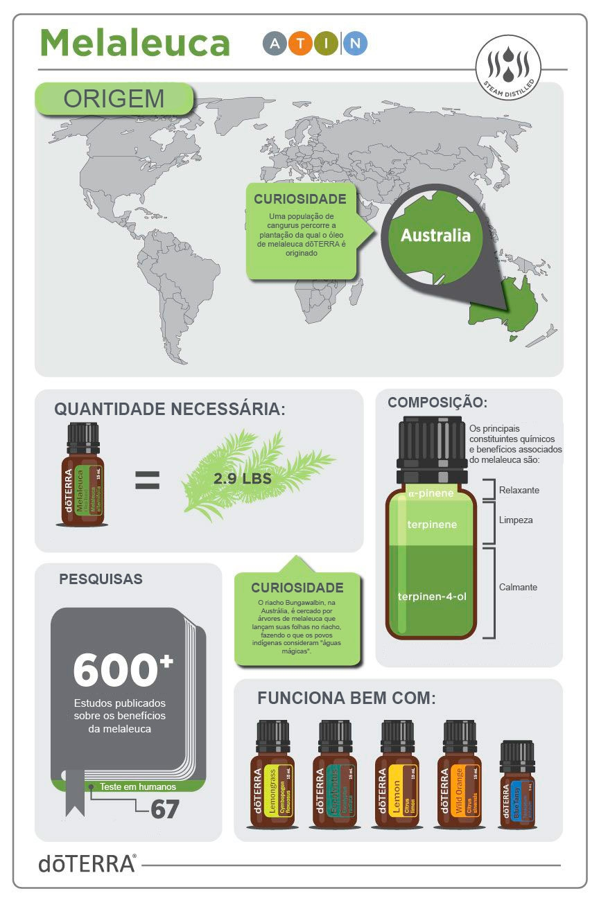 composição do óleo essencial de melaleuca doterra
