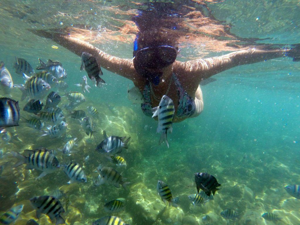 mulher fazendo mergulho de snorkel na praia do dentista