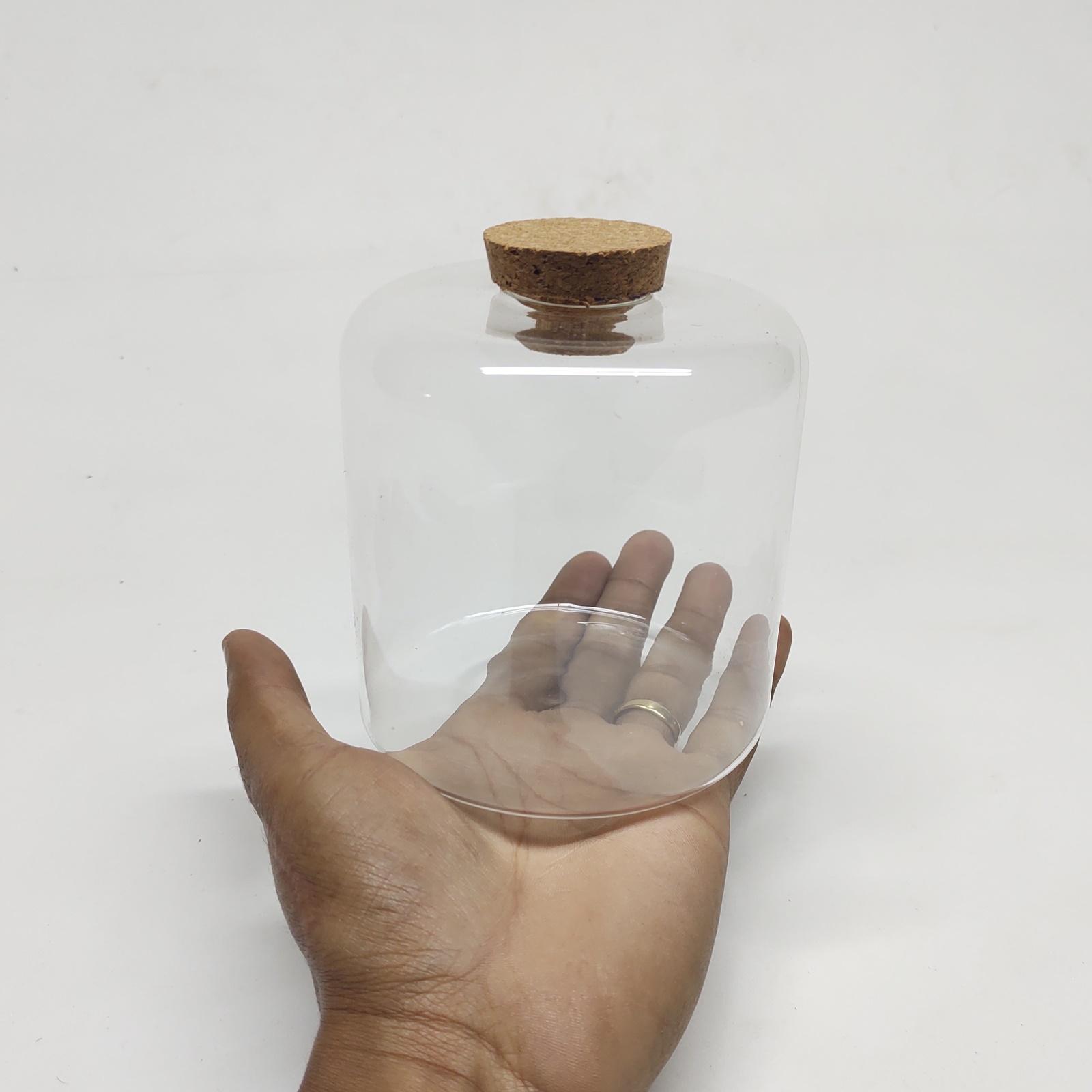 Vaso de Vidro Nati Para Terrário com Rolha