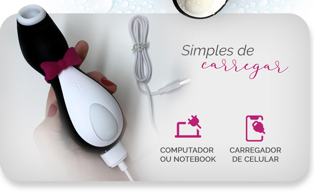 Penguin tem carregamento magnético via USB