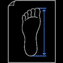 Comprimento do pé
