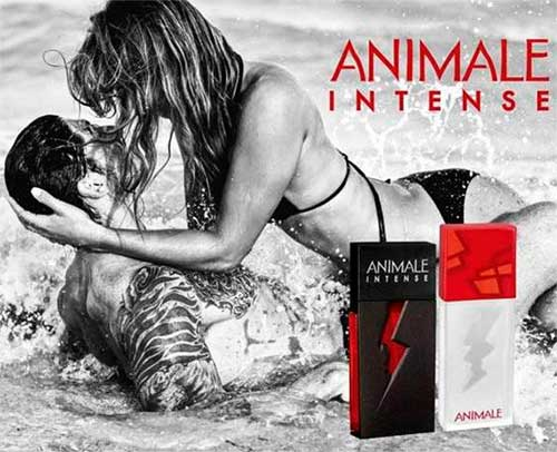 Animale Intense For Woman