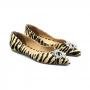 Sapatilha Sapato Da Corte Pedras