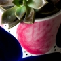 Cachepot de Cerâmica Azul e Rosa Pequeno