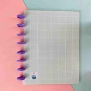 Coleção Geométrica VERDE MENTA - Caderno de Discos (A4)