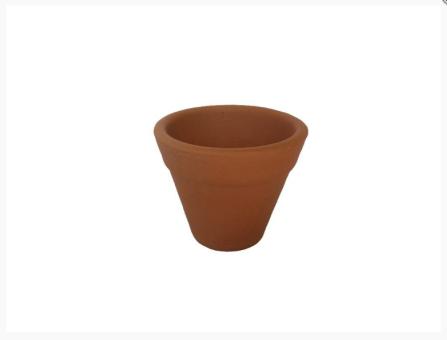 Vaso Copo para Plantio de Grama