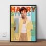 Quadro Harry Styles