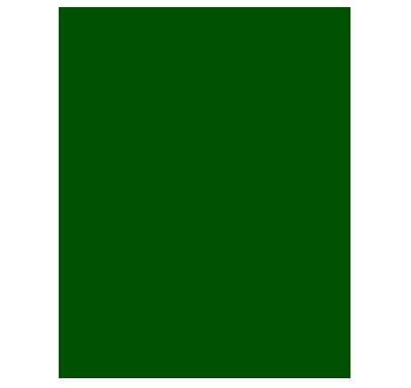 Papel Cartão Fosco 47 x 65cm VERDE - Griffe