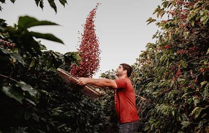 MELAÇO - Melhor café do Rio de Janeiro 2020