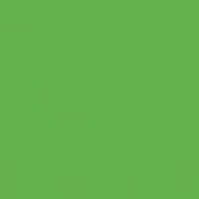 Papel p/ Scrap Liso Cardstock Verde Relva