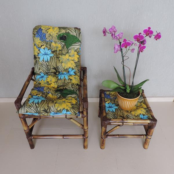 Cadeira de Bambu 1 Lugar com Almofada Araras