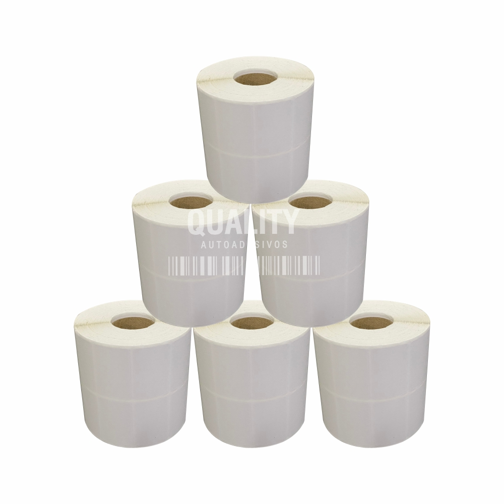 5 Rolos Etiqueta Térmica 40x25mm 2 Colunas  - Etiqueta Certa