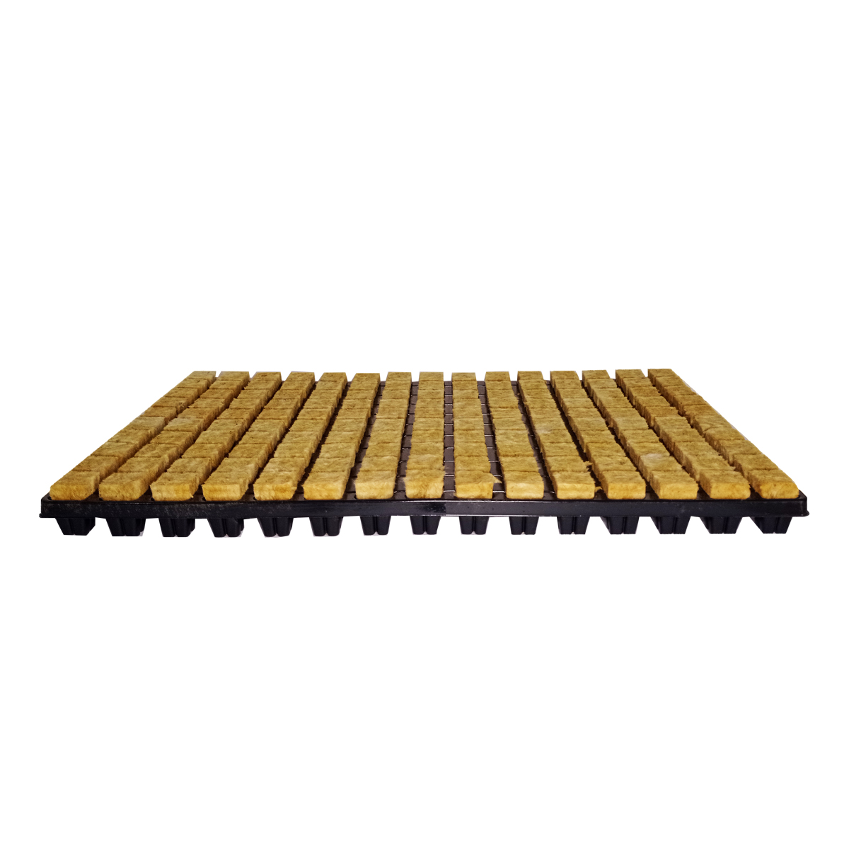 Bandeja de Clonagem Stone Wool Tray 50 Espaços