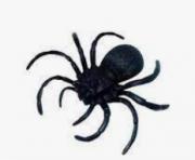 Aranha Decorativa Preta - Brasilflex