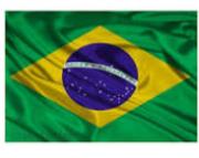 Bandeira Do Brasil 60x90cm