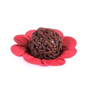 Forminha Para Doce Rosa Pink c/50 - Scaranelo