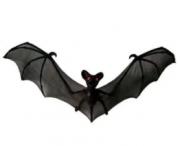 Morcego Para Decoração Halloween 50x26cm - Matsumoto
