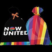 Sacola Plástica Decorativa Now United c/8 - Festcolor