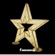 3D030 - Estrela 5 Pontas 3D Glamour