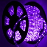 Mangueira 127V Lilas LED - Luminosa Corda de Natal