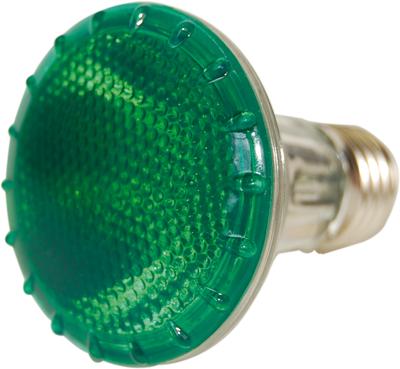 Lâmpada PAR 20 Halógena 50W E27 Verde