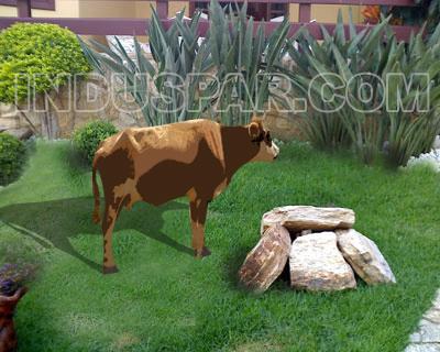 Vaca para Presépio Linha Color Elegance - Medidas 0,60 mt x 0,98 mts