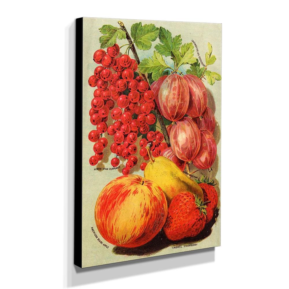 Quadro Cozinha Vintage Frutas Canvas 40x30cm-COZ184