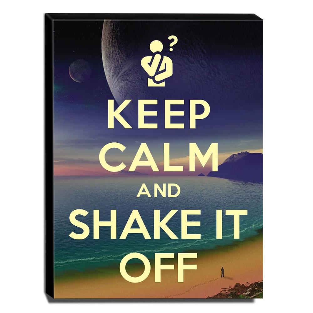 Quadro Keep Calm And Shake It Off Canvas 40x30cm-KCA90