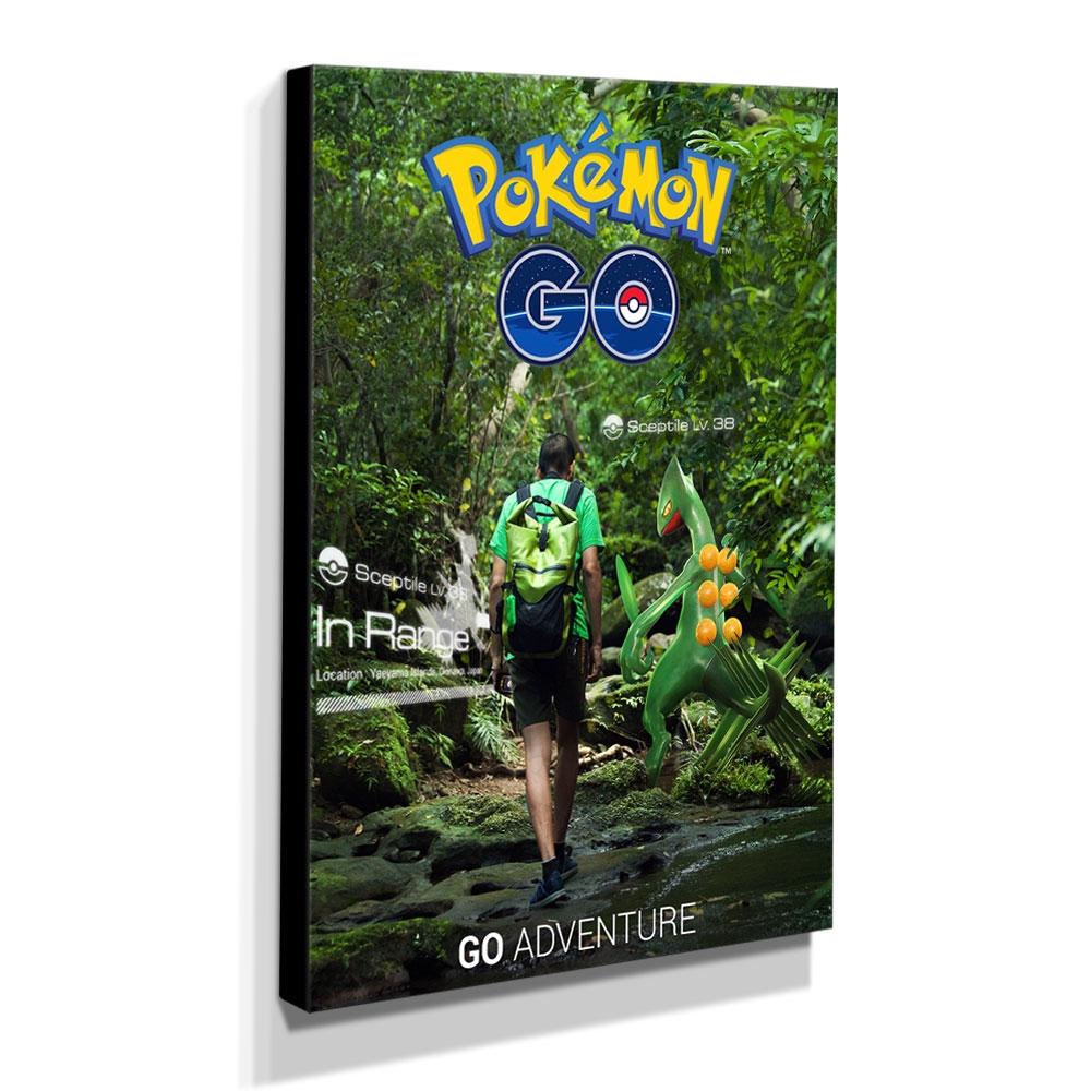 Quadro Pokémon GO Canvas 40x30cm-INF15