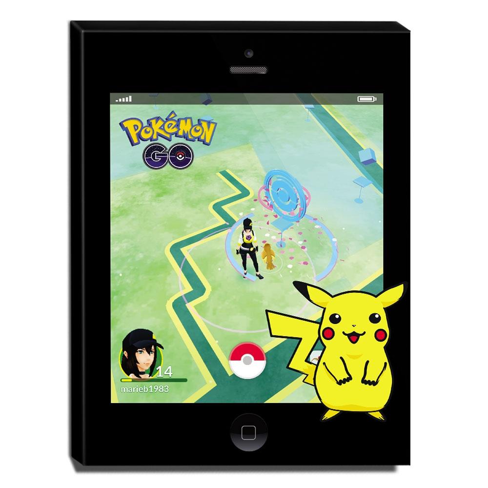 Quadro Pokémon GO Canvas 40x30cm-INF20