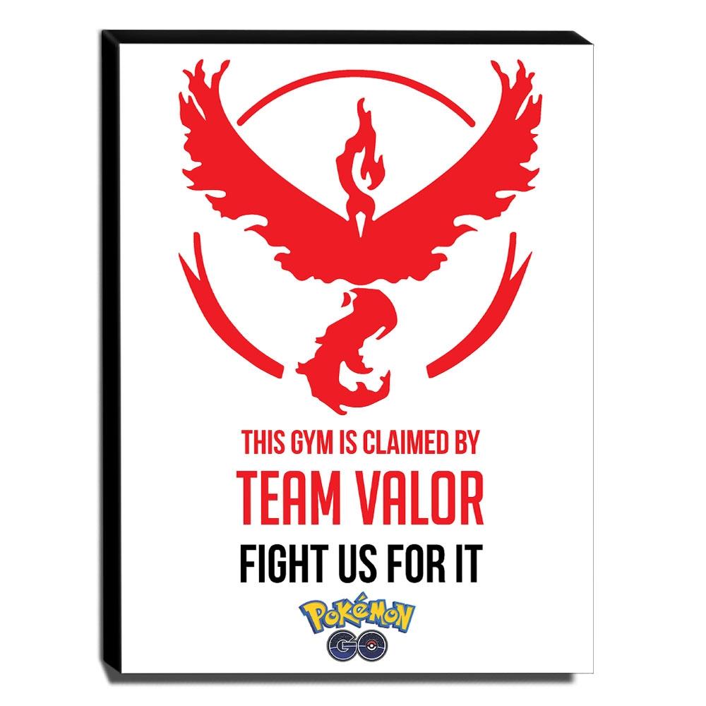 Quadro Pokémon GO Team Valor Canvas 40x30cm-INF010