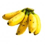 Banana ouro unid.