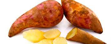 Batata yacon unid.
