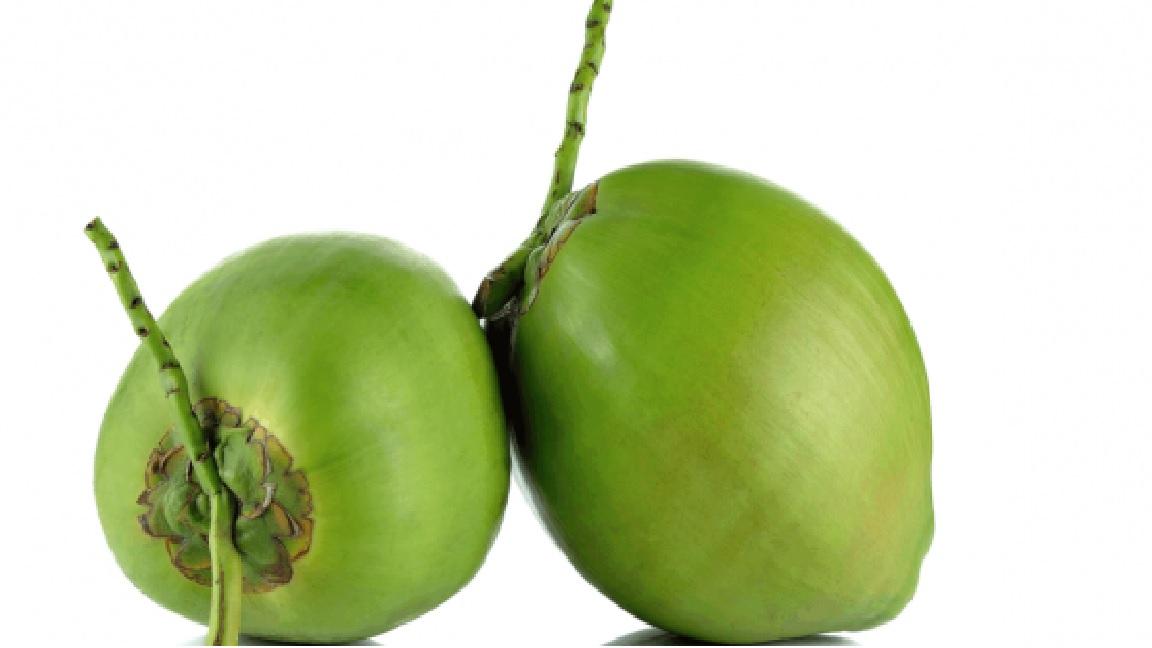 Coco verde unid.