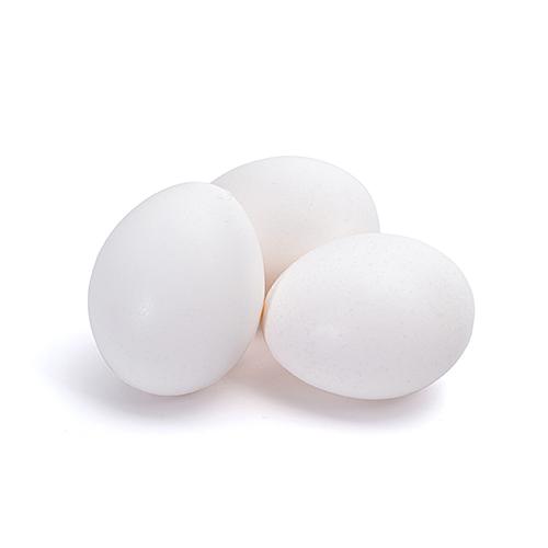 Ovos brancos pente 20 unidades