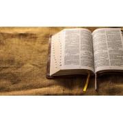 Curso Bacharel em Teologia | 31 Disciplinas + TCC c/ 50h | Material Físico