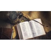 Curso Parcial de Médio em Teologia | 15 disciplinas c/40h | 100% Digital