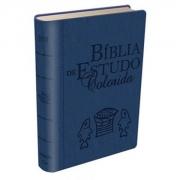 Bíblia de Estudo Colorida | Letra Grande