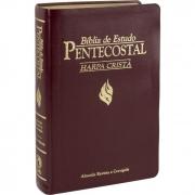 Bíblia de Estudo Pentecostal com Harpa