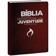 Bíblia de Estudo Pentecostal para Juventude Marrom - ED Missionária