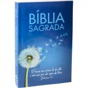 Bíblia Sagrada NTLH