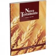 Novo Testamento Letra Grande: Nova Tradução na Linguagem de Hoje (NTLH)